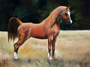 Brown Horse | Animal Oil Painting